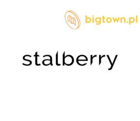 Akcesoria do stylizacji paznokci - Stalberry