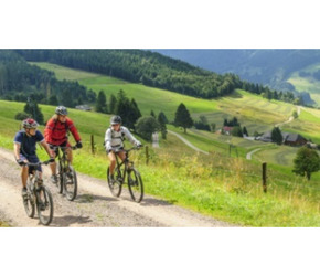 Lato 2020 w Beskidzie Sądeckim-Rodzinne wakacje w górach