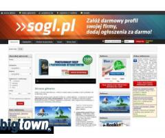 Wieloletnie serwisy www - sprzedam