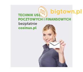 Technik Usług Pocztowych i Finansowych- kierunek dostępny za darmo w Cosinus!